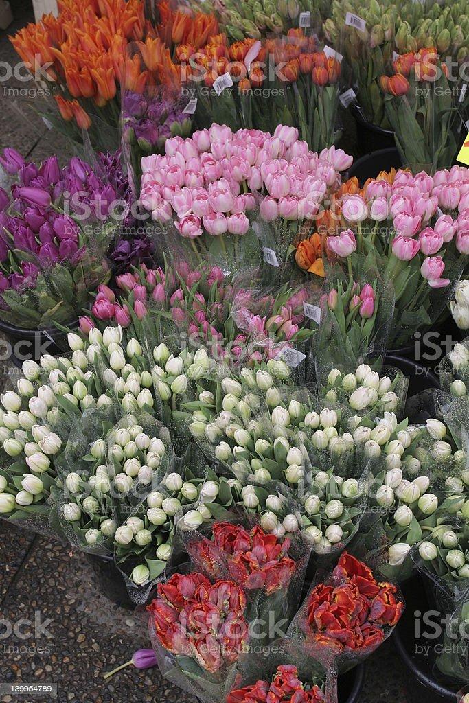 Tulip stall stock photo