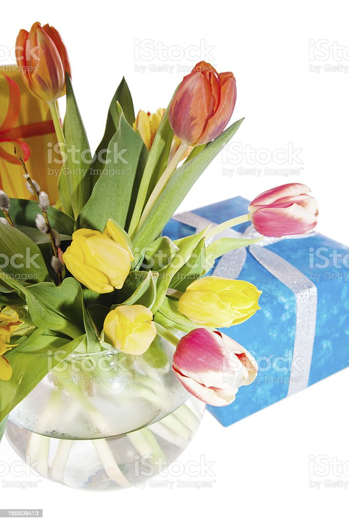 Tulips and boxes with gifts, it is isolated on white royalty-free stock photo