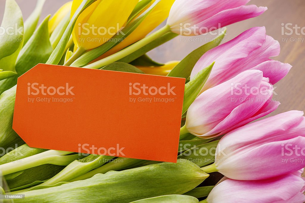 Tulips and empty tag royalty-free stock photo
