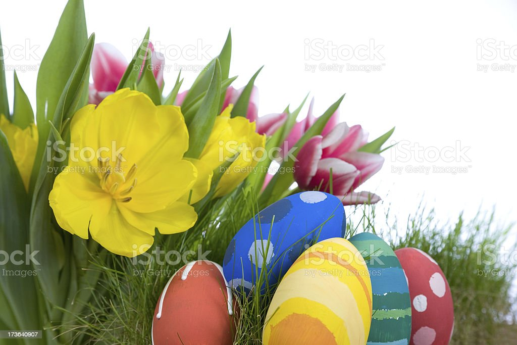 Tulips and hand painted Easter eggs royalty-free stock photo