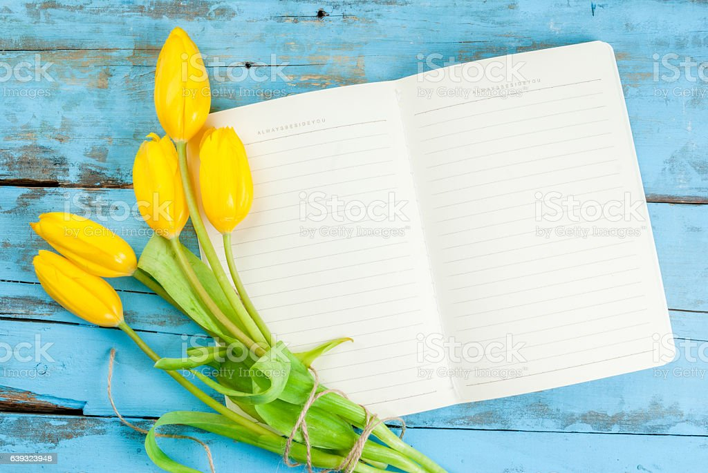 Tulips and notebook on blue table stock photo