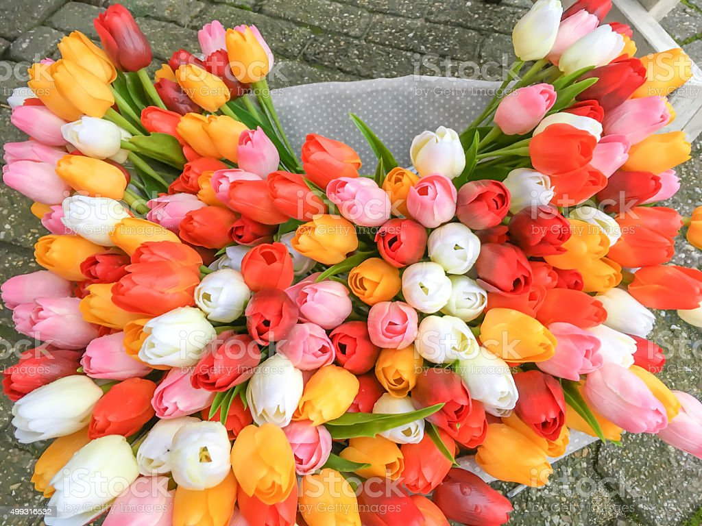 Tulips Bouquet, from Netherlands stock photo