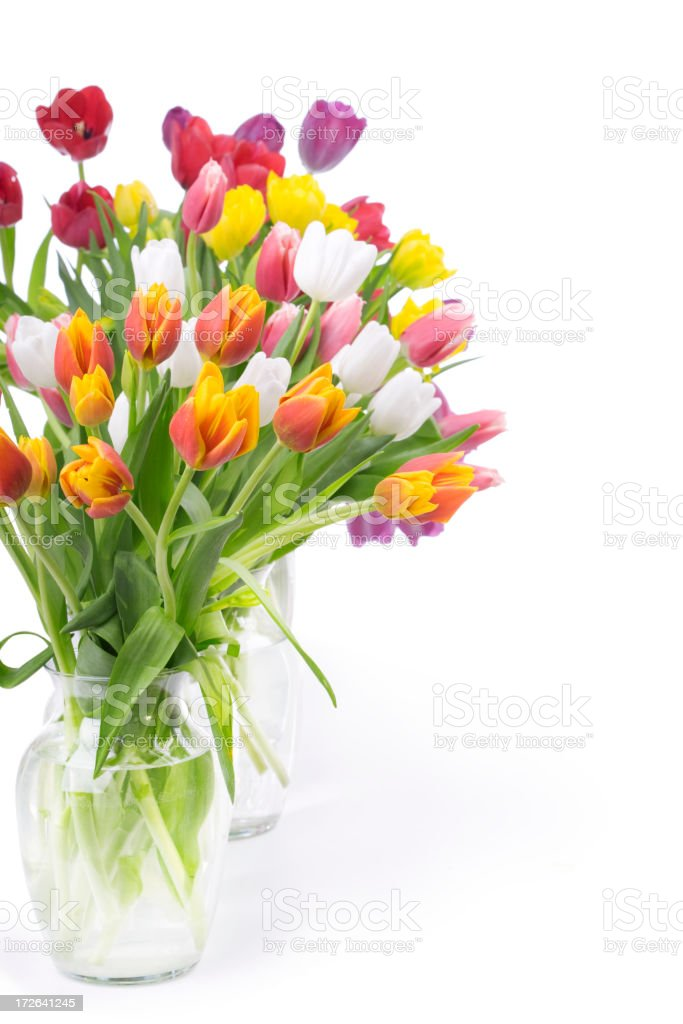 Tulips Bouquet (XL) royalty-free stock photo