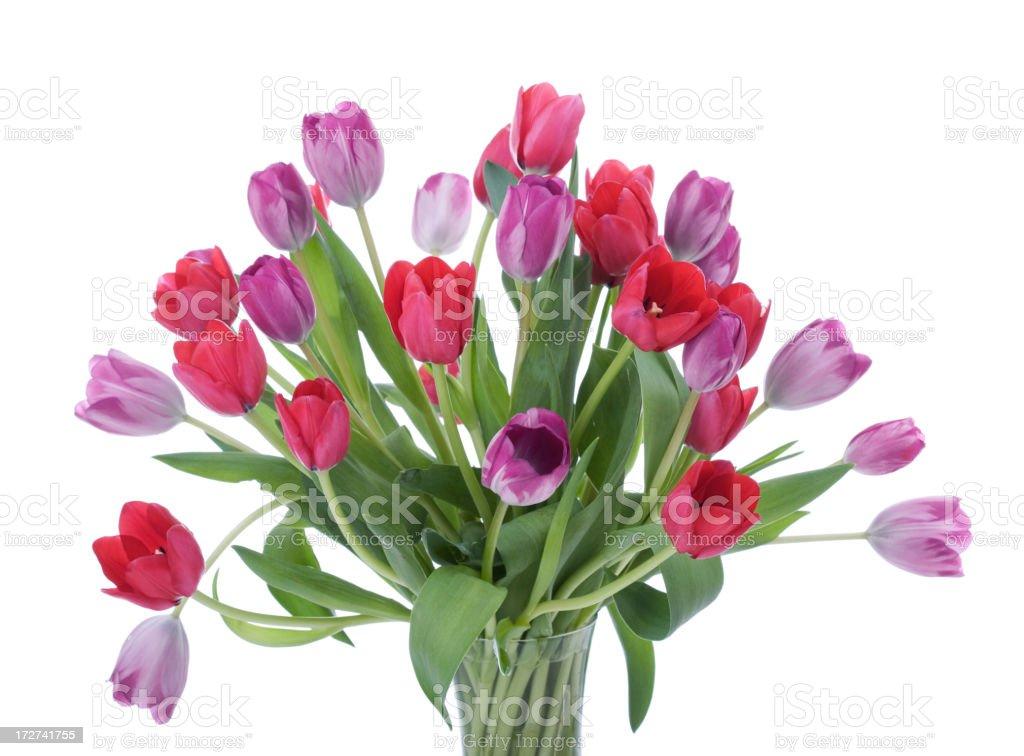 Tulips Bouquet (XL) stock photo