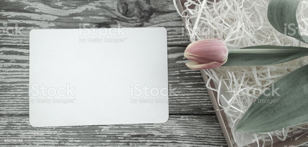 Tulips flowers bunch on Vintage newspaper background stock photo