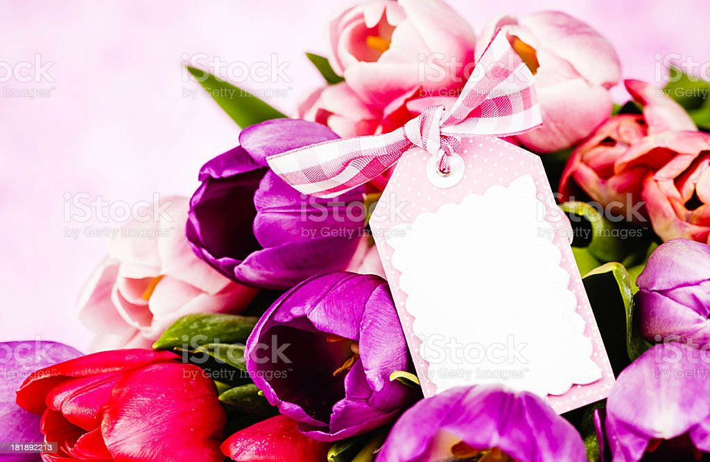 Tulips for Mother's Day with Copy Space royalty-free stock photo