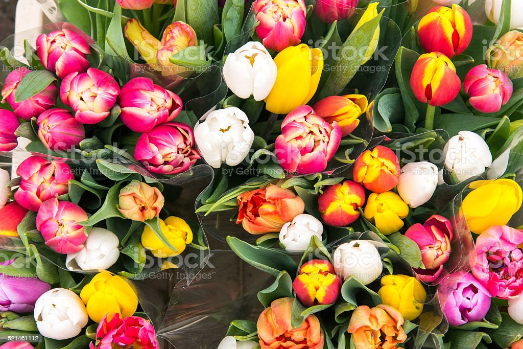 Tulips for sale at a markt stock photo