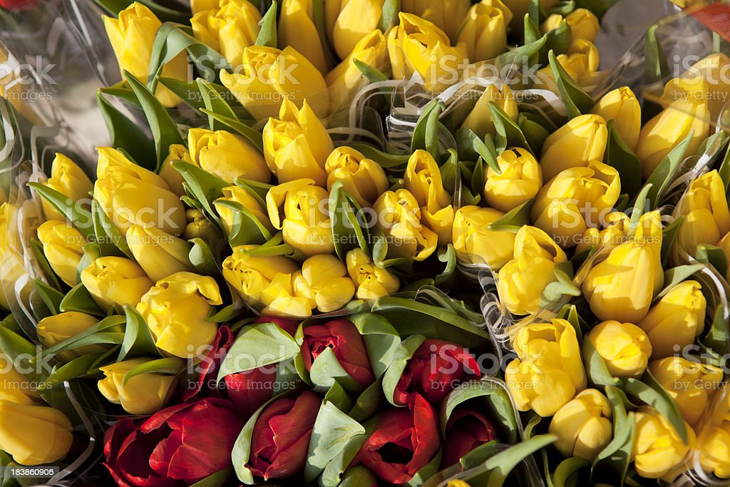Tulips for Sale at Flower Market royalty-free stock photo