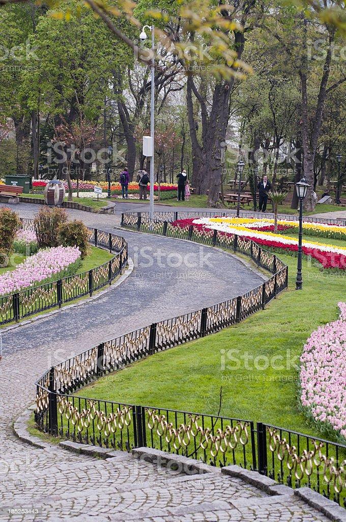 Tulips in Emirgan Park, Istanbul, Turkey royalty-free stock photo