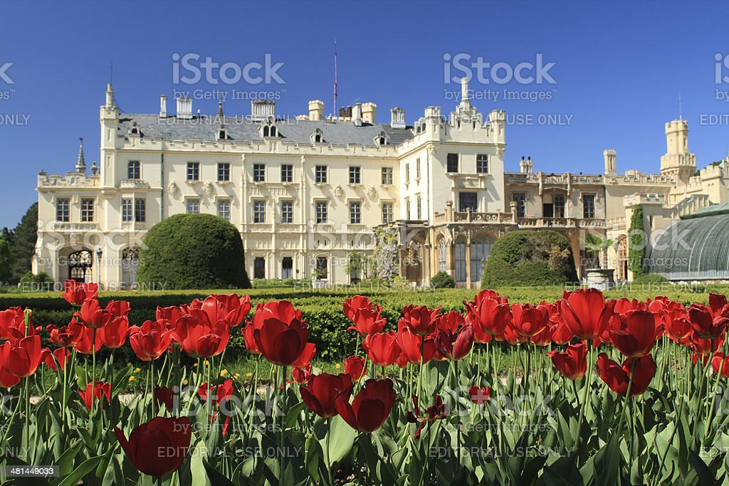 Tulips in front of Lednice Castle stock photo