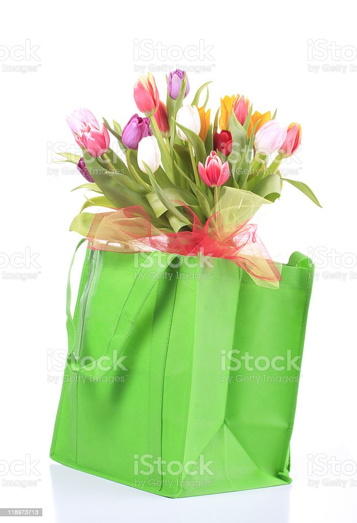 Tulips in Green recycle bag. royalty-free stock photo
