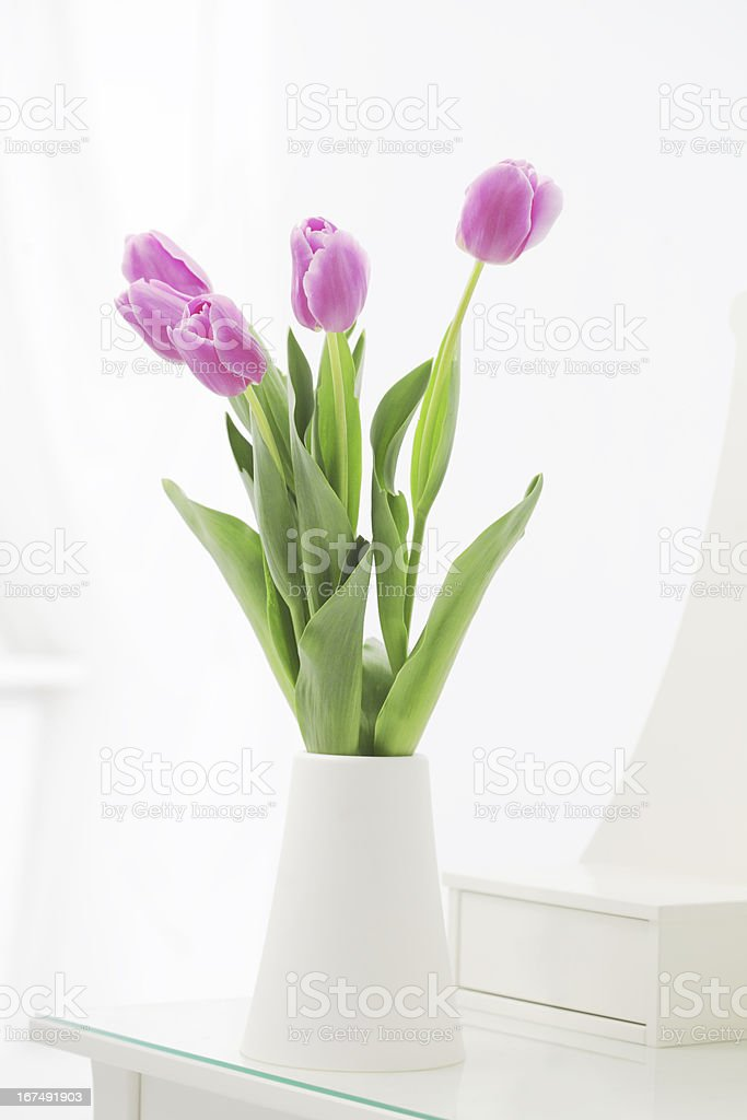 tulips in room royalty-free stock photo