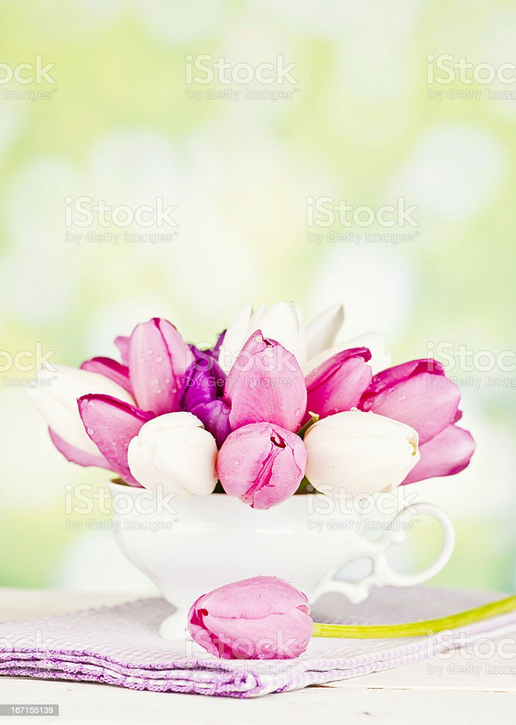 Tulips in Teacup for Mother's Day royalty-free stock photo