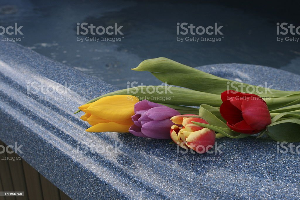 Tulips on a hot tub royalty-free stock photo