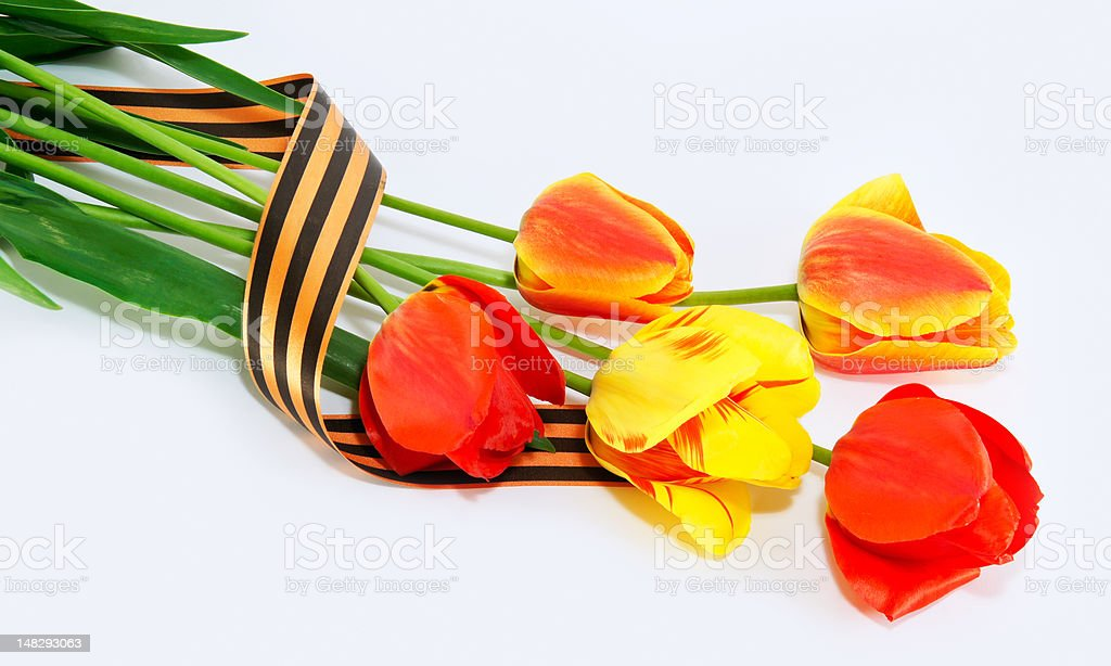 tulips which have been tied up George by a tape royalty-free stock photo