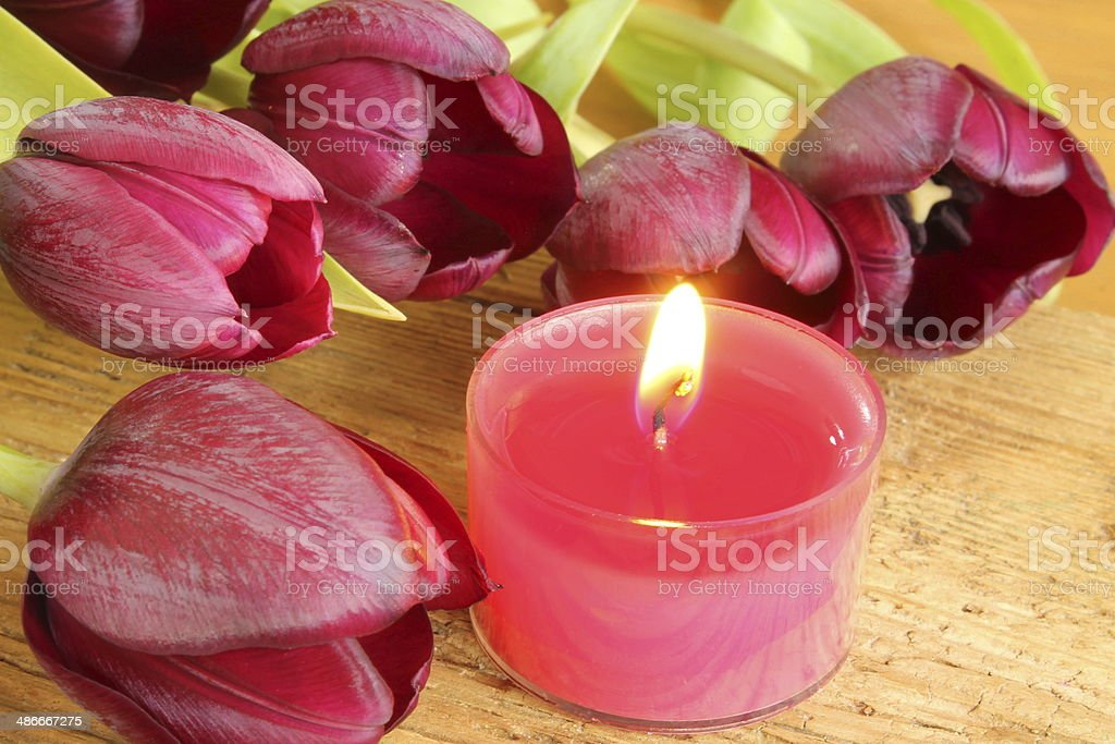 Tulips with candle stock photo