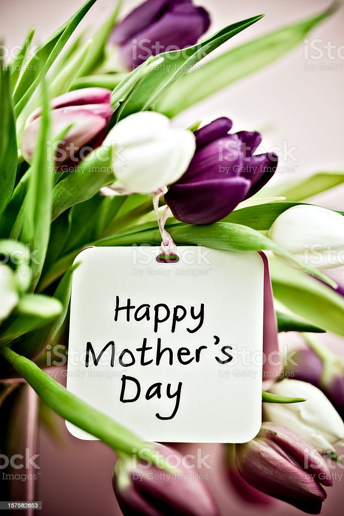 Tulips with Mother's Day Card royalty-free stock photo