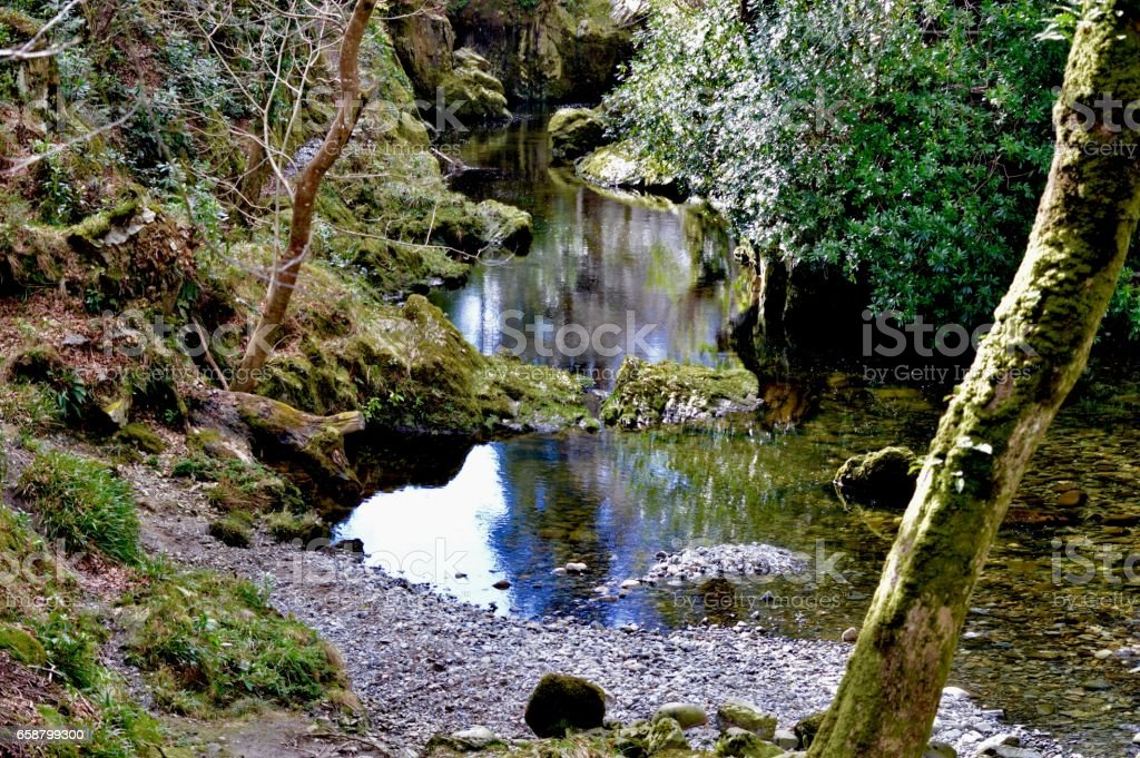 Tullymore Forest Park, Newcastle, County Down, Northern Ireland stock photo