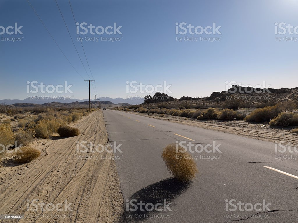 Tumbleweed blowing across the road stock photo