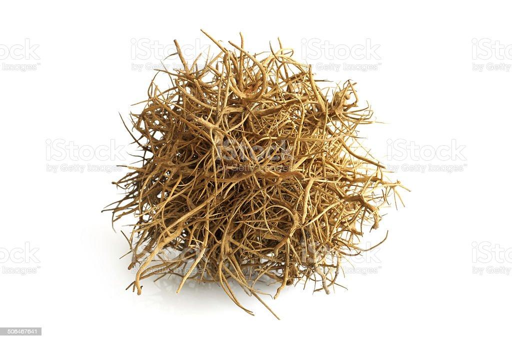 Tumbleweed stock photo