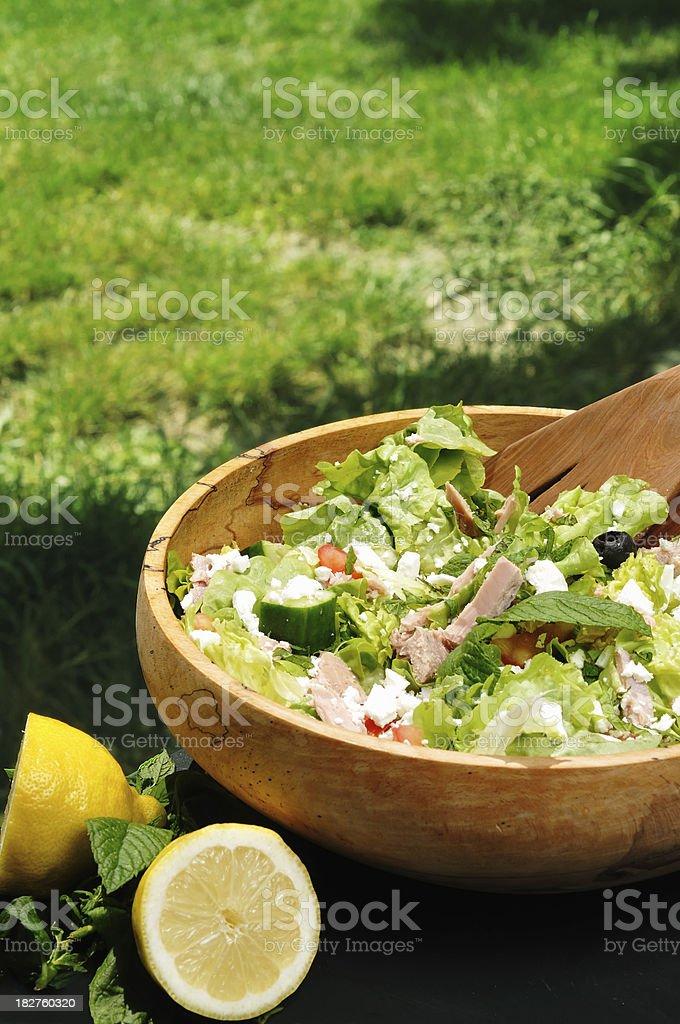 tuna and feta salad outdoors stock photo