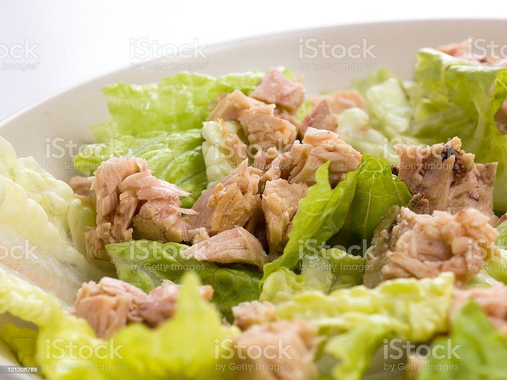 Tuna and Romaine lettuce salad royalty-free stock photo