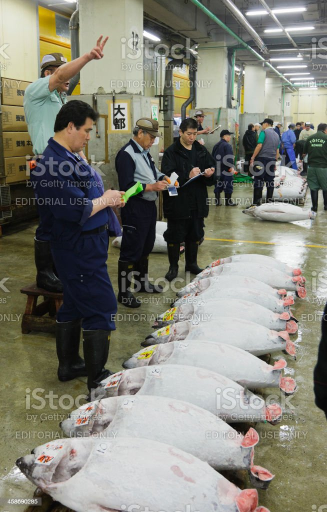 Tuna Auction at Tsukiji Fish Market royalty-free stock photo