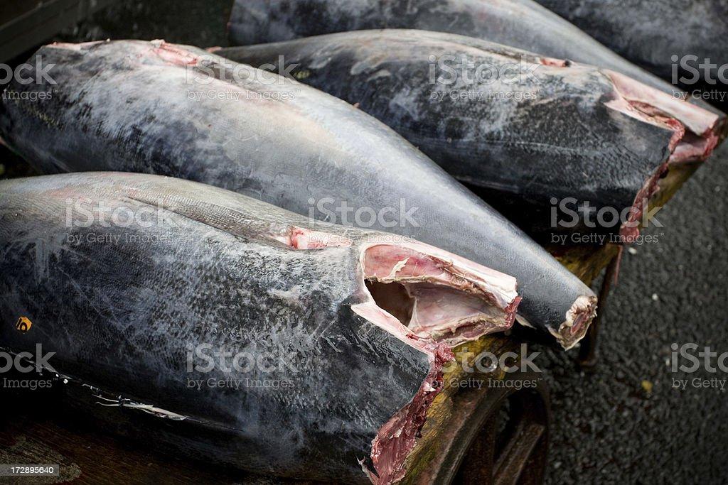 Tuna being prepared at Tokyo fish market royalty-free stock photo