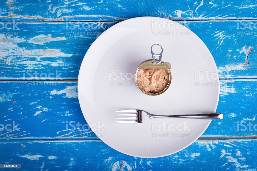 Tuna can stock photo