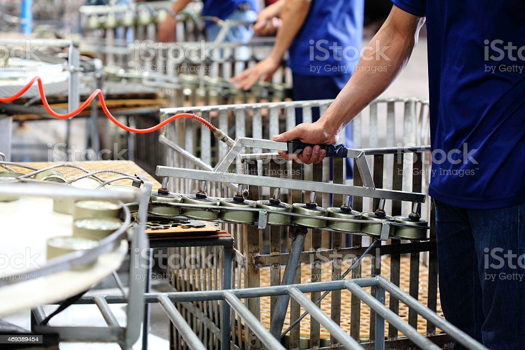 Tuna fish processing in factory stock photo