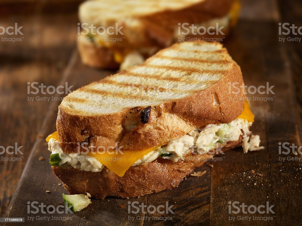 Tuna Melt Panini stock photo