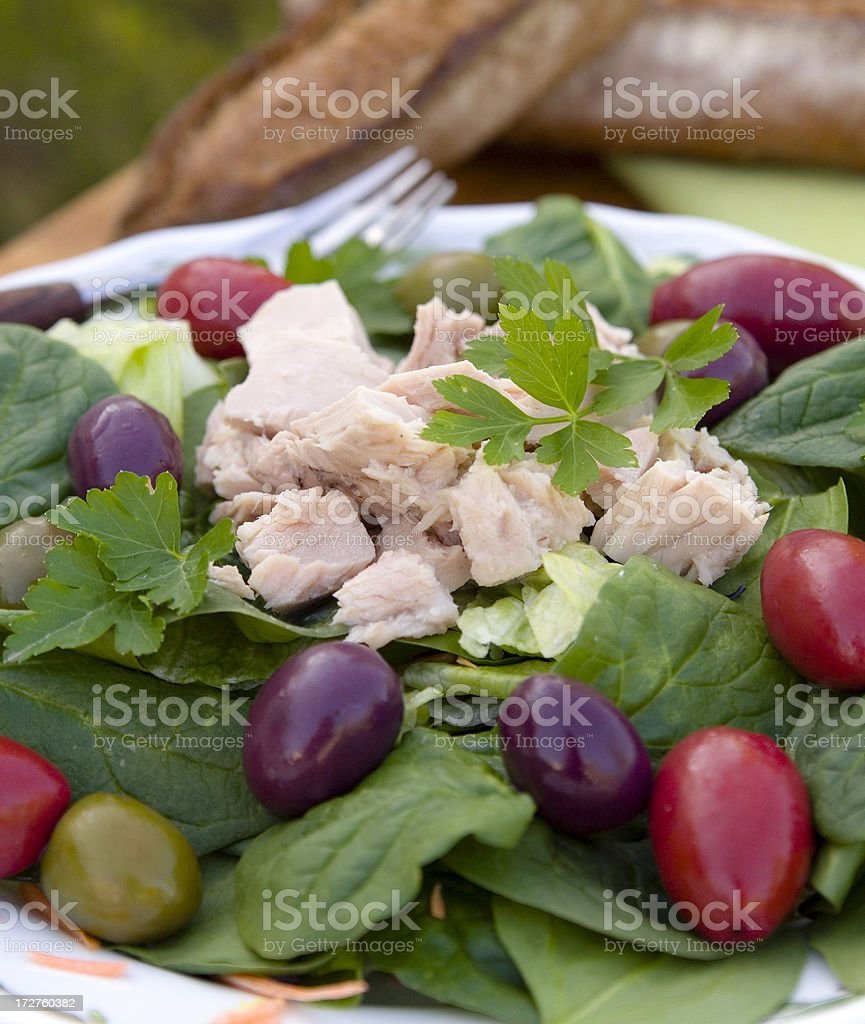 Tuna & Olives with Spinach & Lettuce, Healthy Mediterranean Seafood Salad royalty-free stock photo