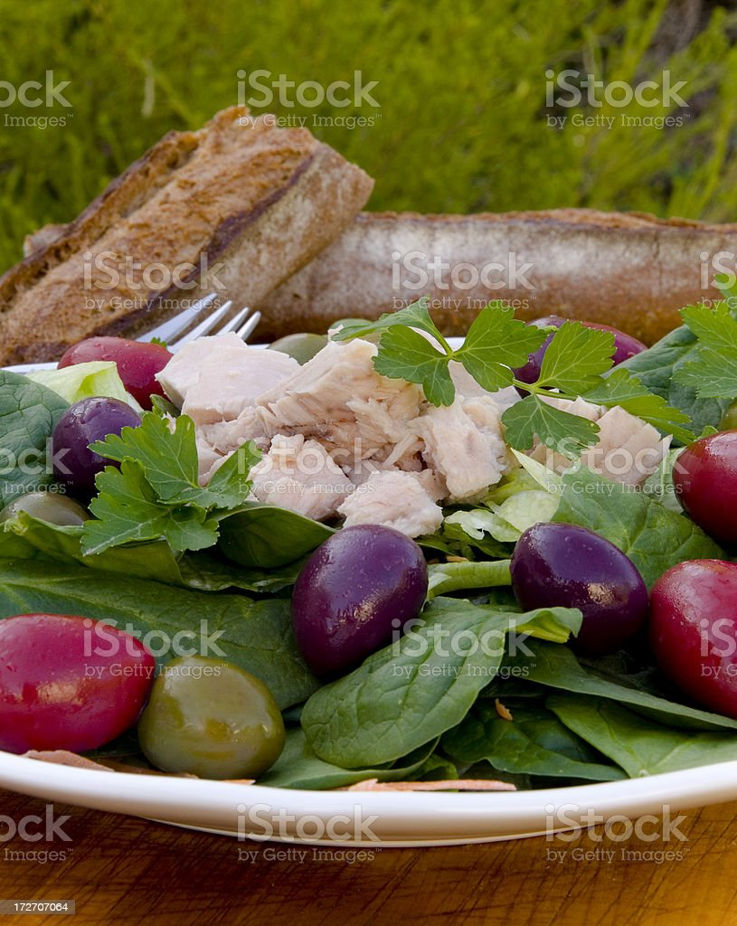 Tuna & Olives with Spinach & Lettuce, Healthy Seafood Salad royalty-free stock photo