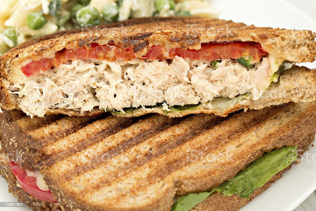 Tuna Panini stock photo