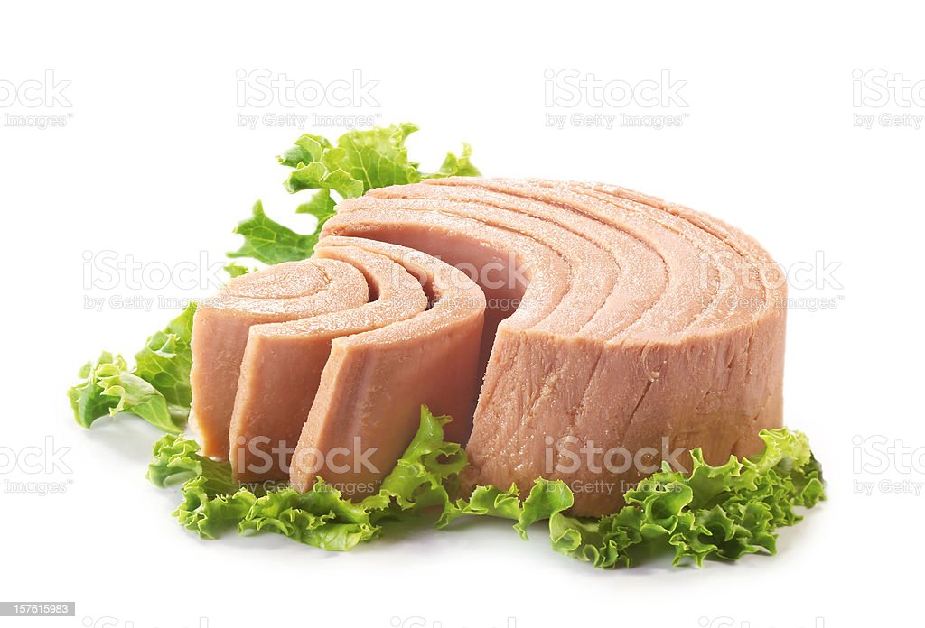 tuna stock photo