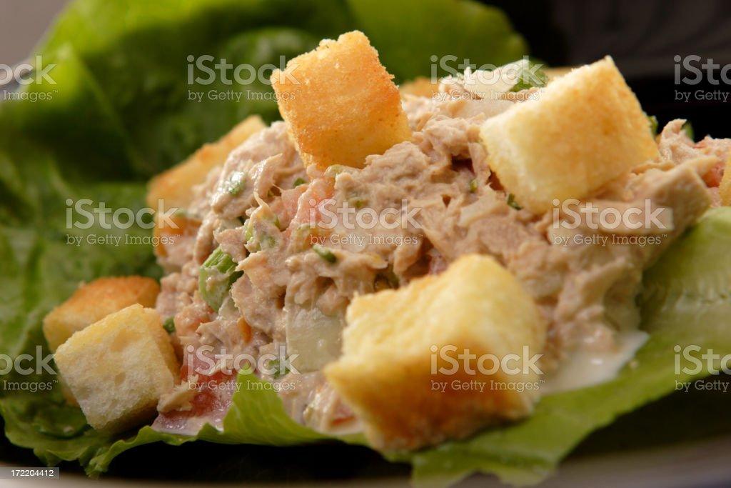 tuna salad 2 royalty-free stock photo