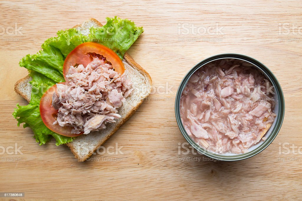 Tuna Sandwich stock photo
