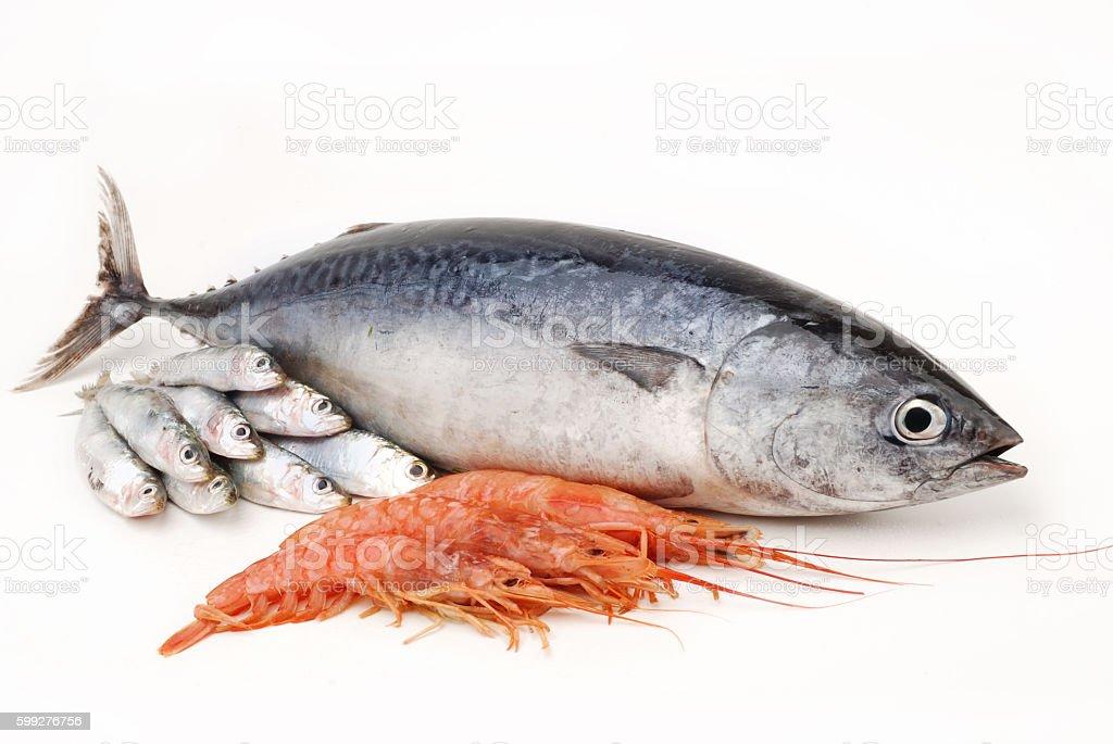 Tuna with crayfish on white background stock photo