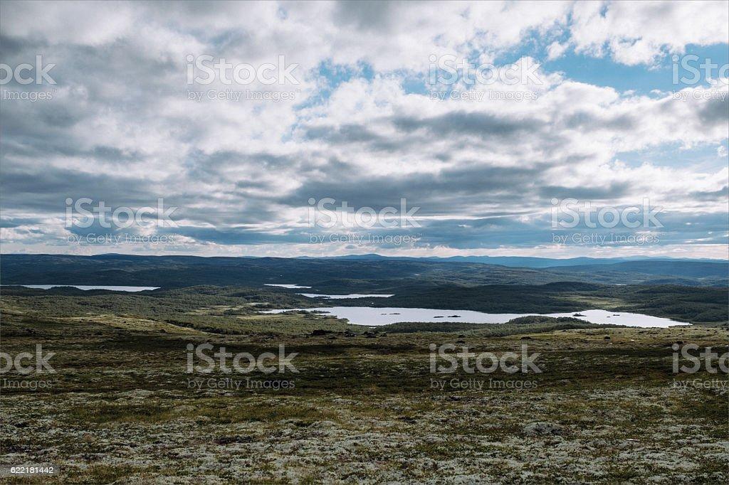 Tundra landscape. Russia stock photo