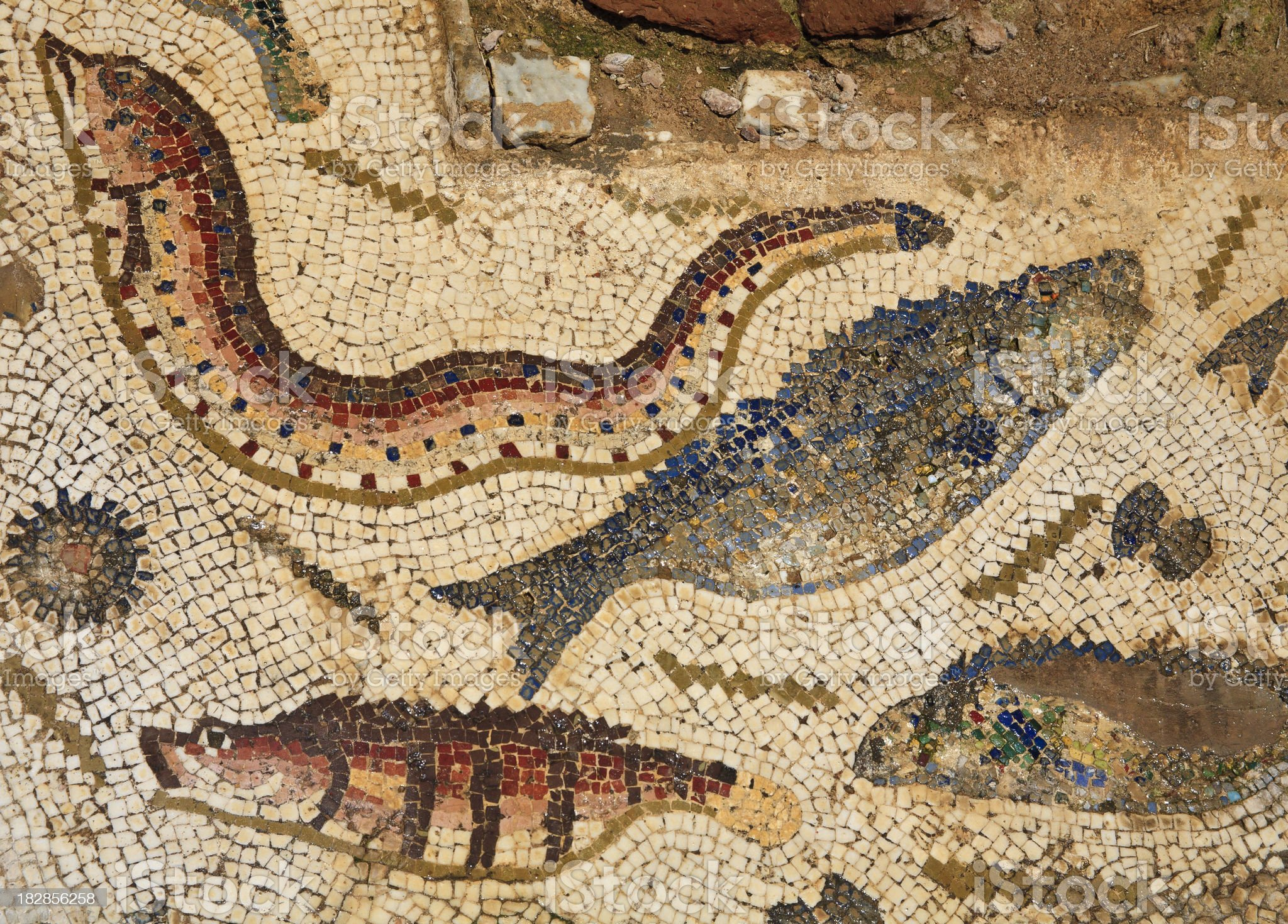 Tunisia: Mosiac Floor Detail at Utique  (Utica) Showing Fish royalty-free stock photo