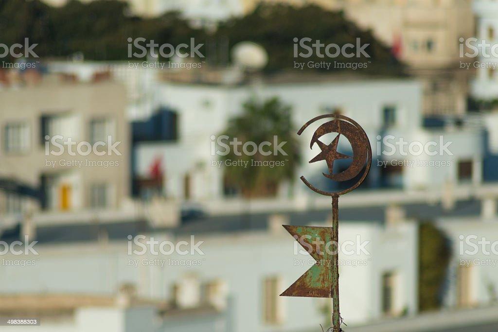 Tunisian Emblem on Roof (4) stock photo