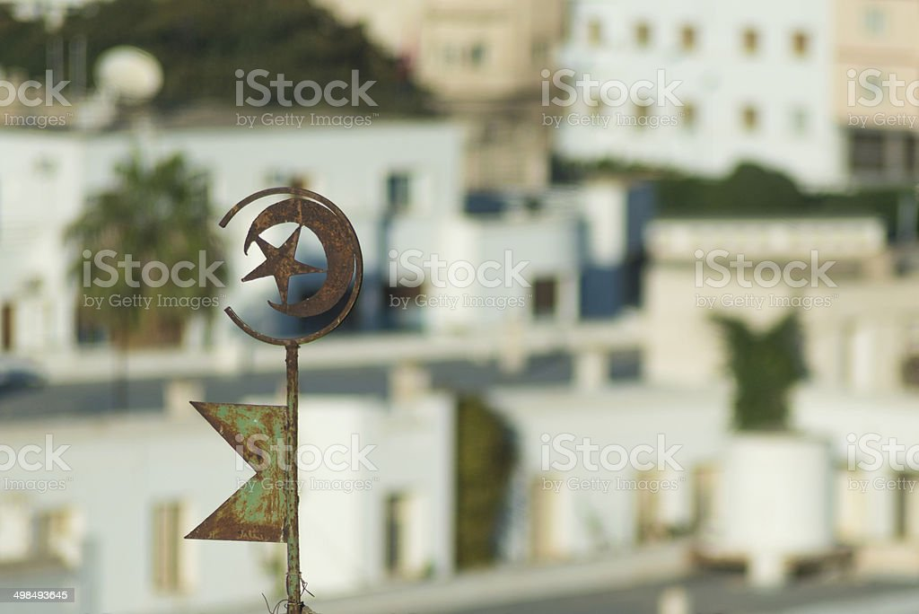Tunisian Emblem on Roof (3) stock photo