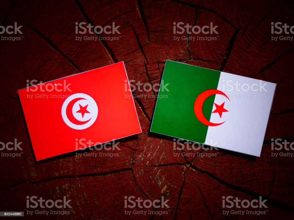 Tunisian flag with Algerian flag on a tree stump isolated stock photo