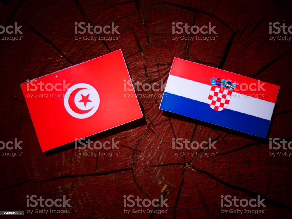 Tunisian flag with Croatian flag on a tree stump isolated stock photo