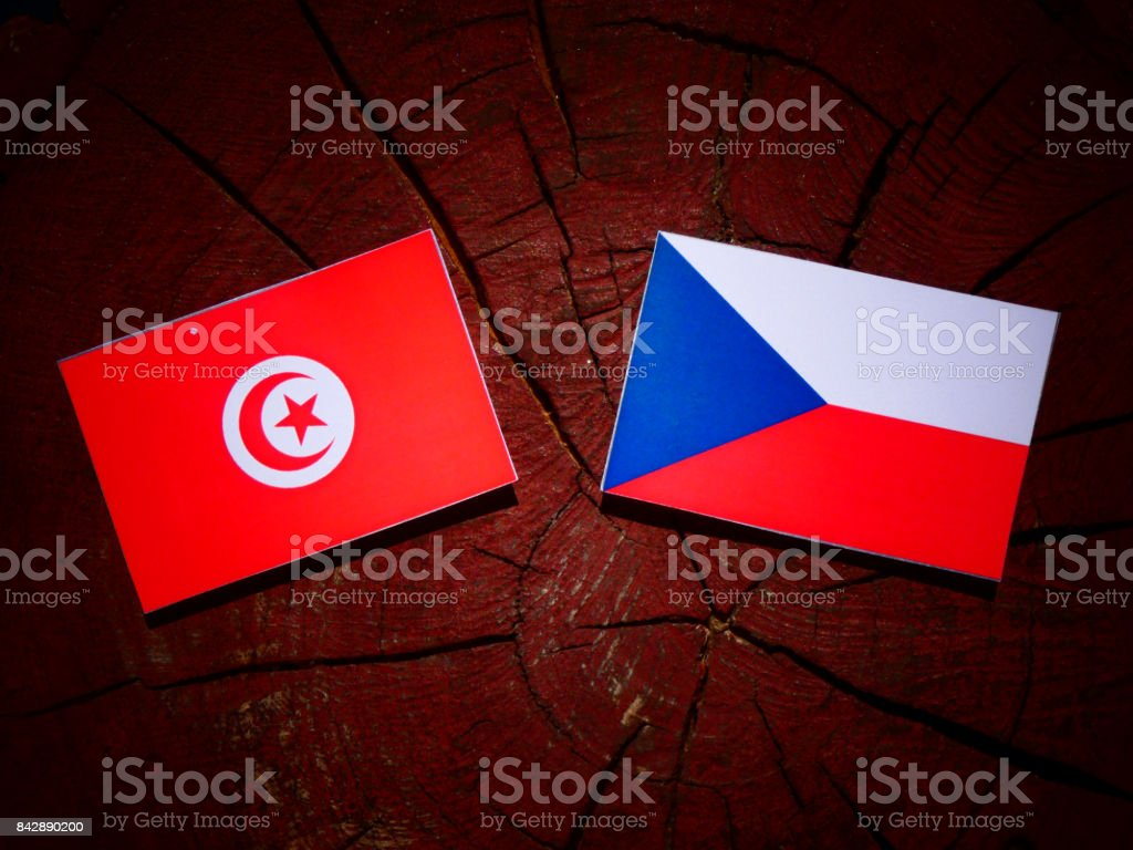 Tunisian flag with Czech flag on a tree stump isolated stock photo
