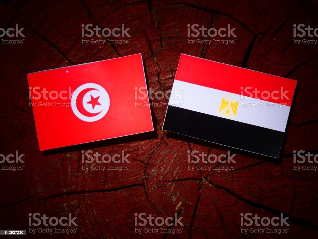 Tunisian flag with Egyptian flag on a tree stump isolated stock photo