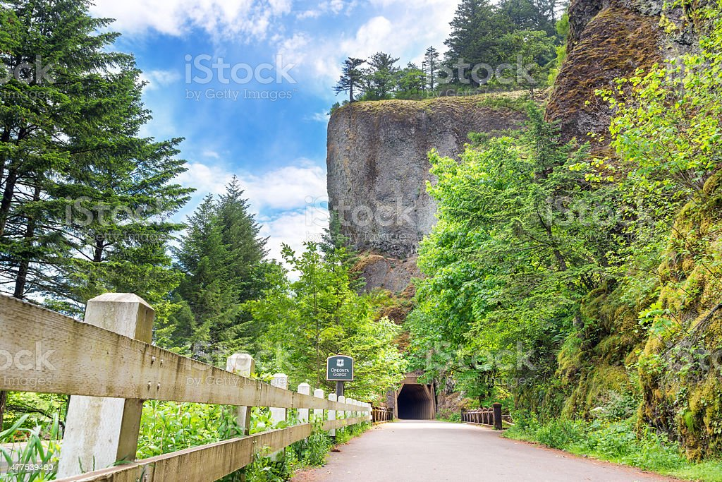 Tunnel by Oneonta Gorge stock photo