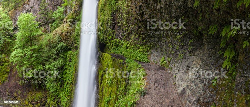 Tunnel Falls trail Columbia River Gorge Oregon stock photo