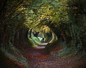 Tunnel hedge pathway