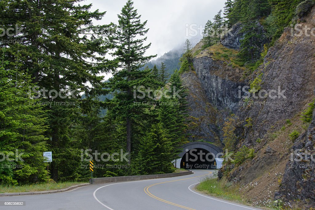 Tunnel in the Olympic National Park, Washington USA stock photo